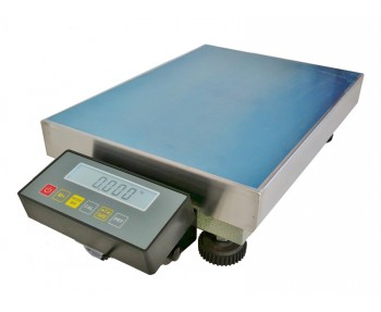 Precision Weighing Platform Scale
